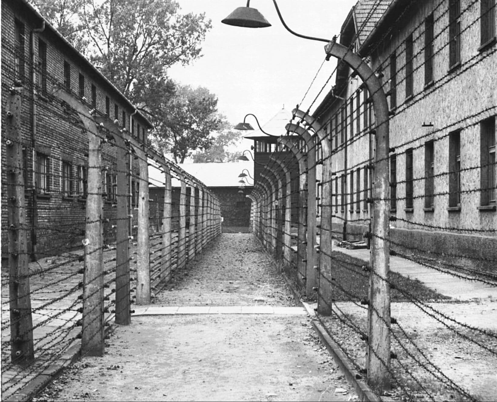 FAKTA: Holocaust