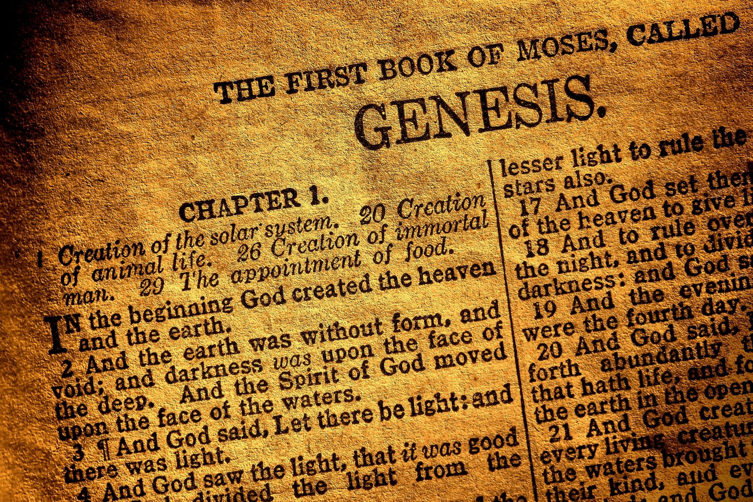 Flere kristendemokratiske kandidater betegner sig selv som kreationister