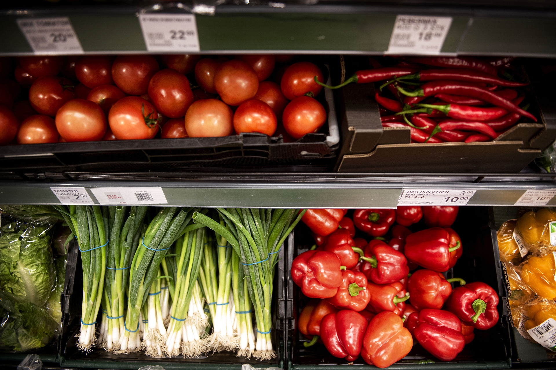 Read more about the article FAKTA: Salget af vegetariske produkter er tredoblet