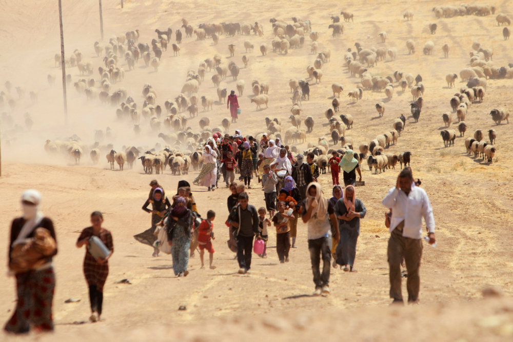 Read more about the article Frygten for nye angreb plager hjemvendte yazidier