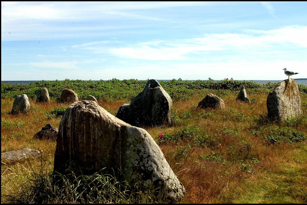 Read more about the article Find spor efter vikinger og nordisk mytologi