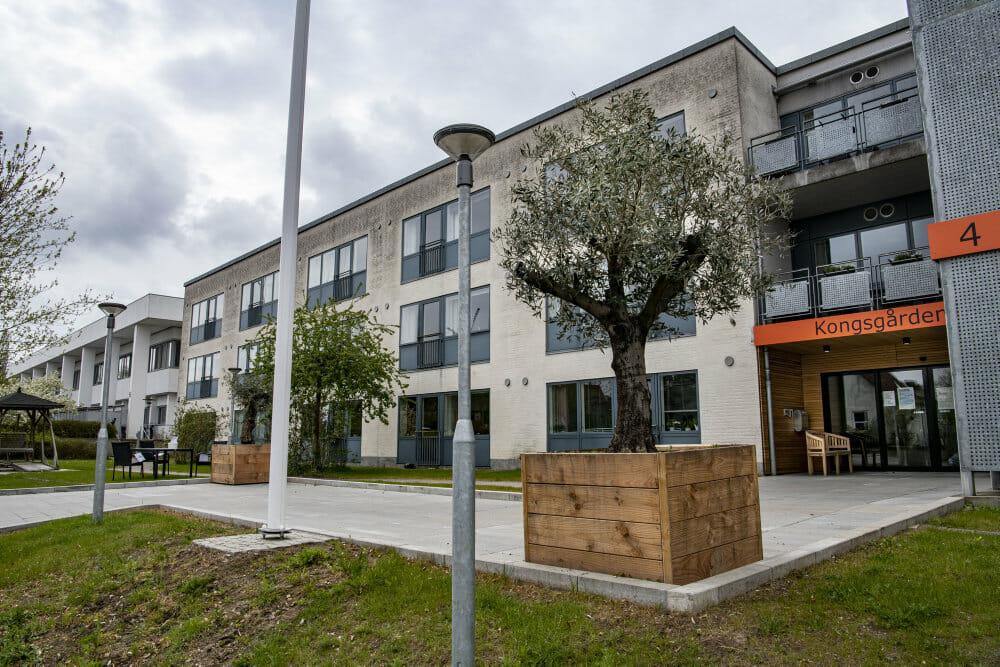 Fagforbund mod skjult kamera trods plejecenter-afsløringer i Aarhus