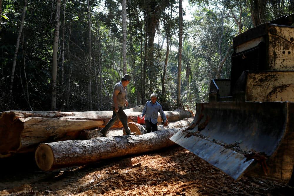 Bolsonaro lover Biden at ende ulovlig afskovning i Amazonas inden 2030