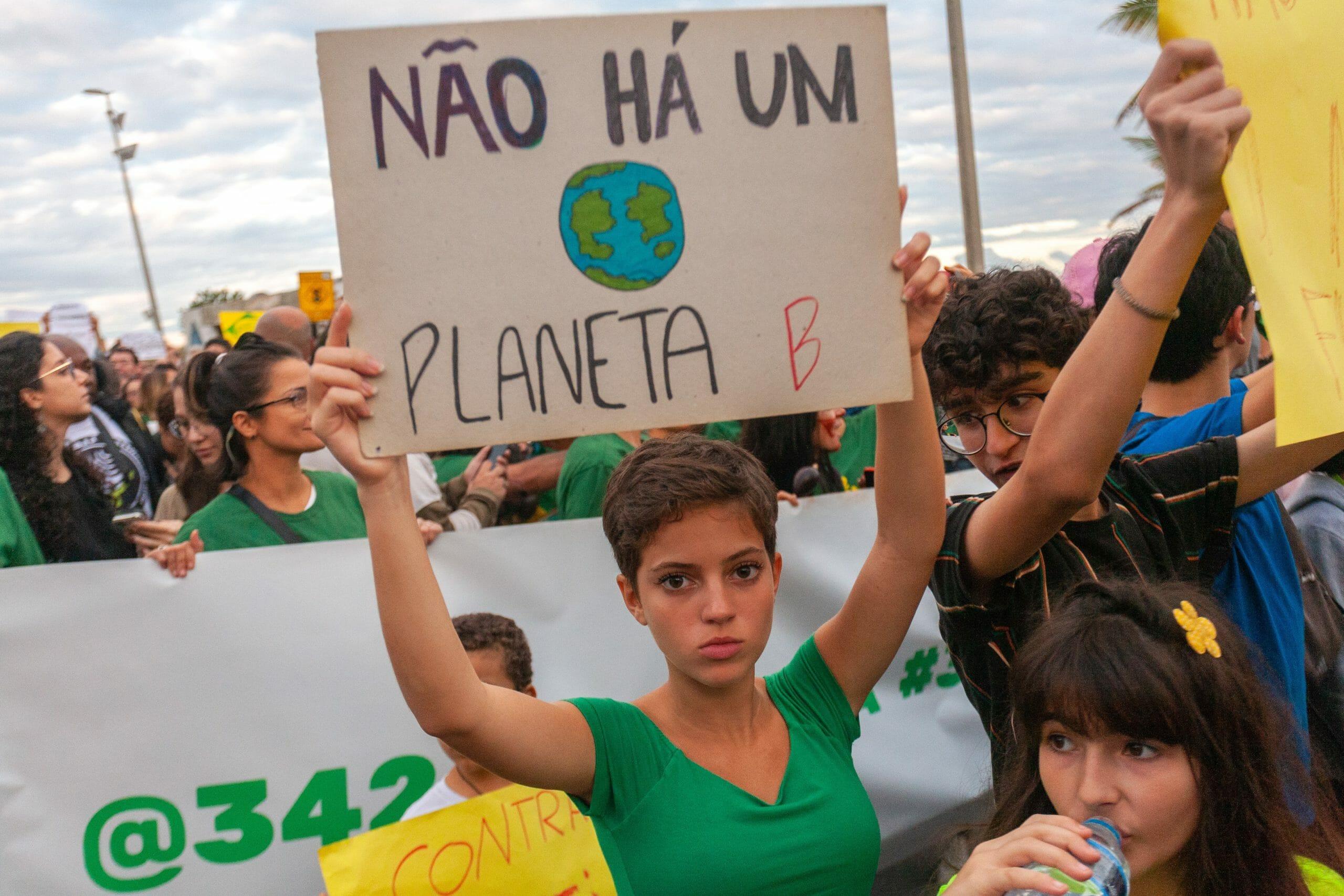 Global Forest Watch: Skovrydningen tog fart i 2020