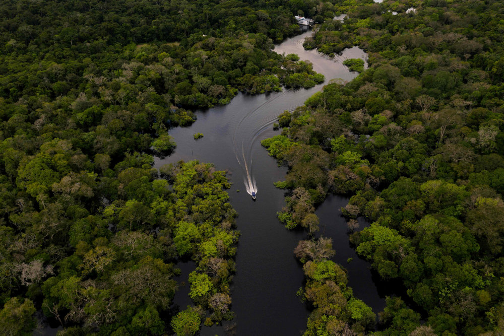 Rapport: Amazonas frigiver mere CO2 end den optager